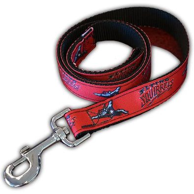 Richmond Flying Squirrels Dog leash