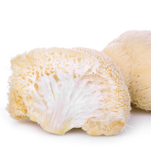 Load image into Gallery viewer, Organic Lion's Mane Mushroom Extract 10:1 (Memory, Focus, Concentration)