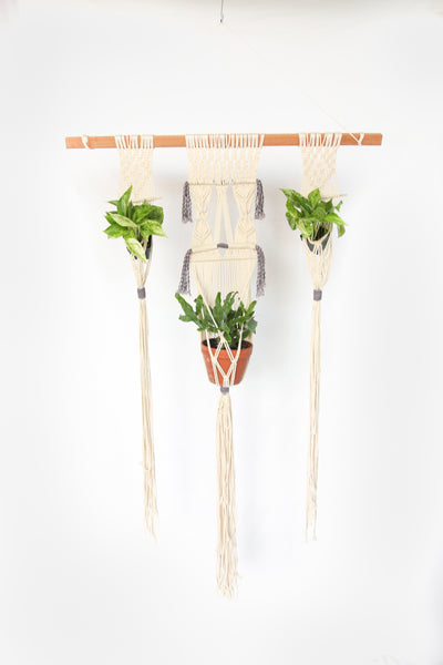 Large Three Plant Holder Wall Hanger