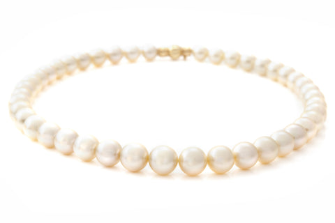 South Sea Gold Pearl Necklace