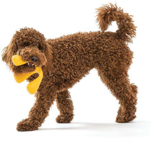 Load image into Gallery viewer, West Paw Zogoflex Air Wox Large Dog Toy,  - Canine's World