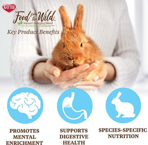 Kaytee Food From the Wild Rabbit Food - Canine's World