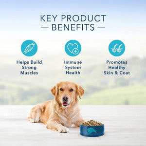 Blue Buffalo Life Protection Formula Adult Fish & Brown Rice Recipe Dry Dog Food,  - Canine's World Blue Buffalo Dry Dog Food