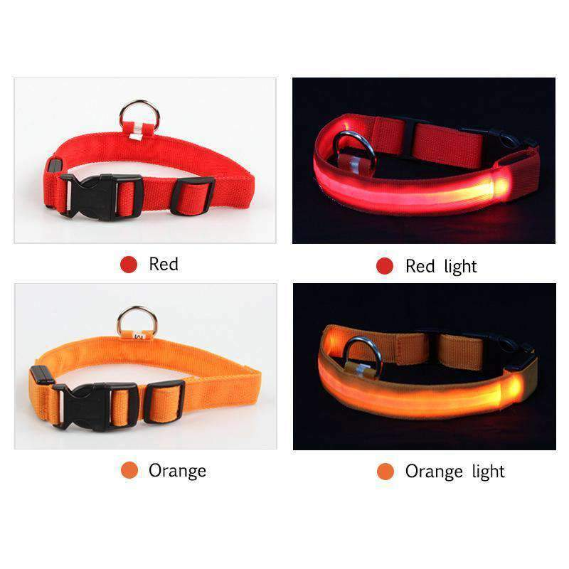 Safety LED Dog Collar (2 Pcs )