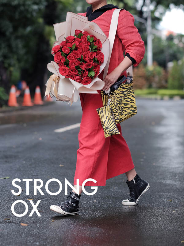 The Strong Ox