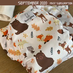 Merry Moose-Mas - Seasonally Inspired Pocket Diaper, 2 Natural Fiber Inserts and Coordinating Wetbag - Bungies Diapers