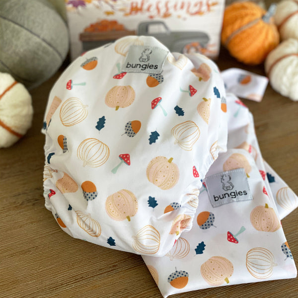 Hey Pumpkin- Seasonally Inspired Pocket Diaper, 2 Natural Fiber Inserts and Coordinating Wetbag - option 1 - November - Bungies Diapers