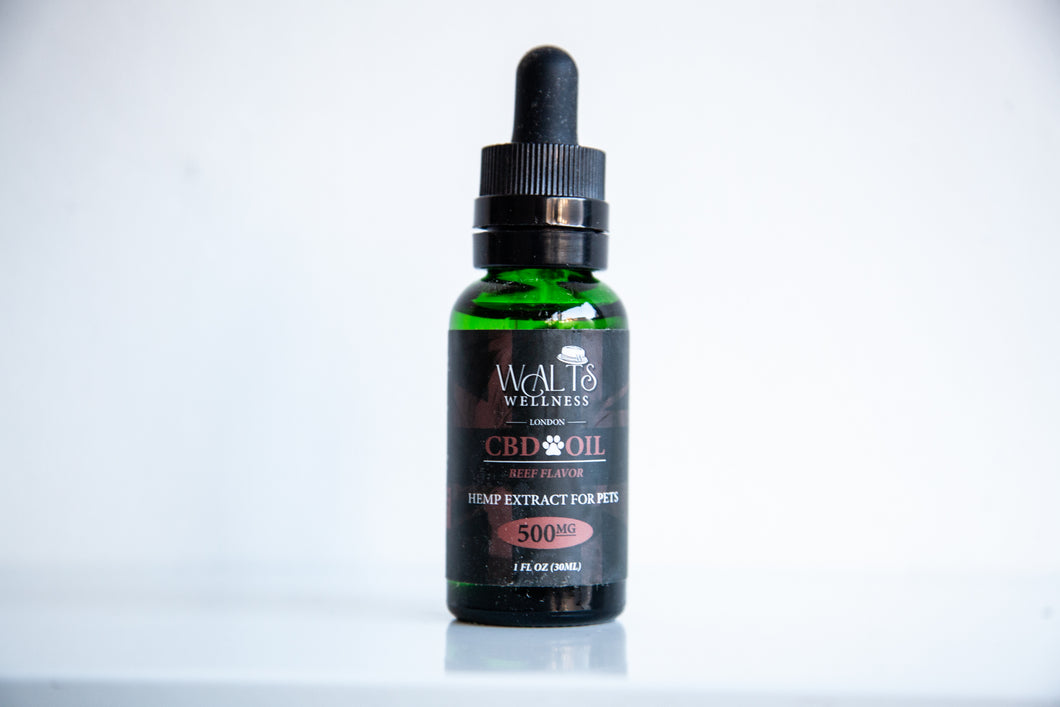 CBD Pet Oil in London, England