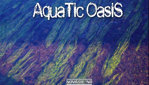 Aquatic Oasis Soundscapes - Water Sound FX