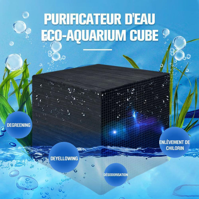 Cube de purification d'eau Eco-Aquarium