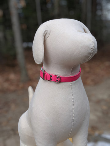 bright pink solid collar