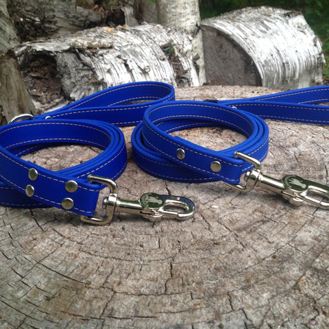 blue leash - $25