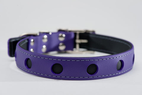 purple on black - circle