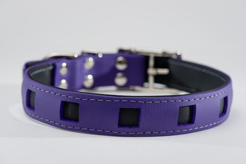 purple on black - square