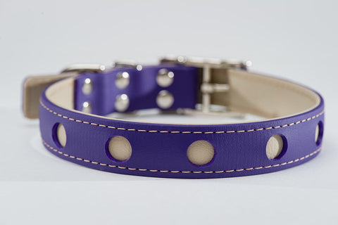 purple on beige - circle