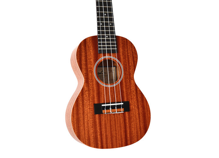 Twisted Wood PI-100C Pioneer - Concert Ukulele with gig bag