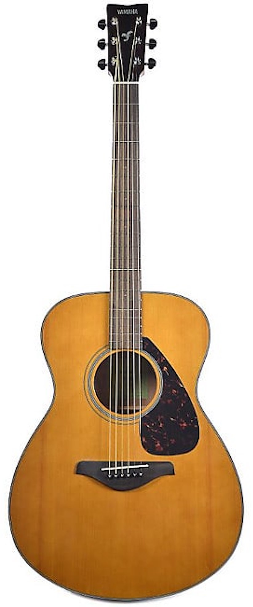 Yamaha FS800 T Acoustic Guitar - Tinted