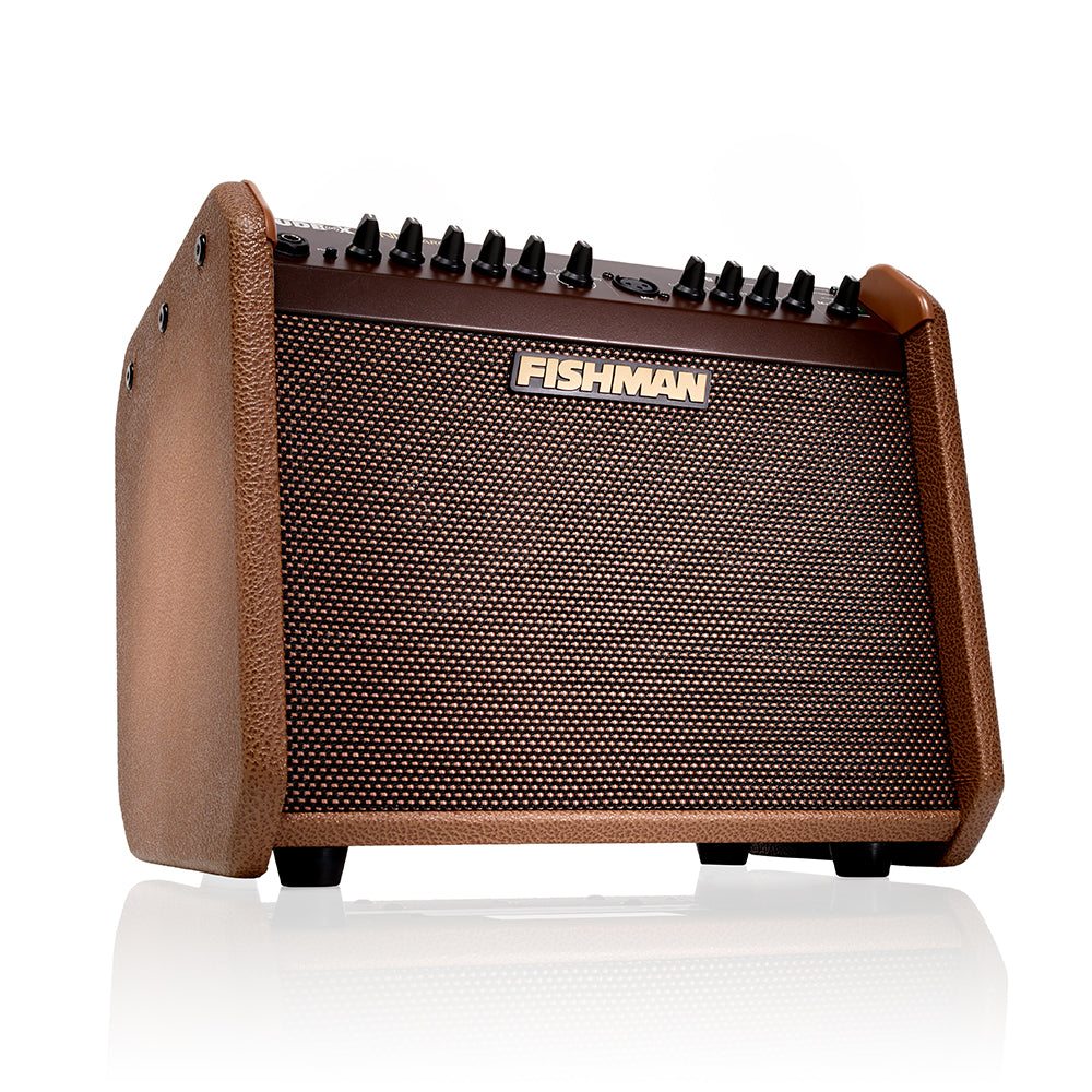 Fishman PRO-LBC-500 Loudbox Mini Charge Amplifier
