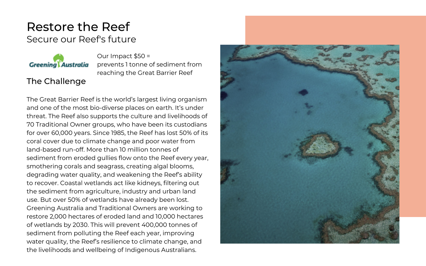 Aôra Voyage support Greening Australia to regenerate the Great Barrier Reef
