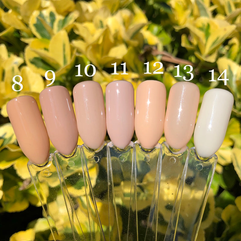 Naked NUDE Bundle