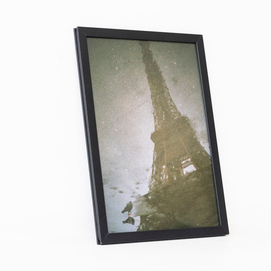Eiffel Tower and birds / A5 bk frame