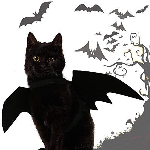 CreepyParty™ Cat Halloween Costumes
