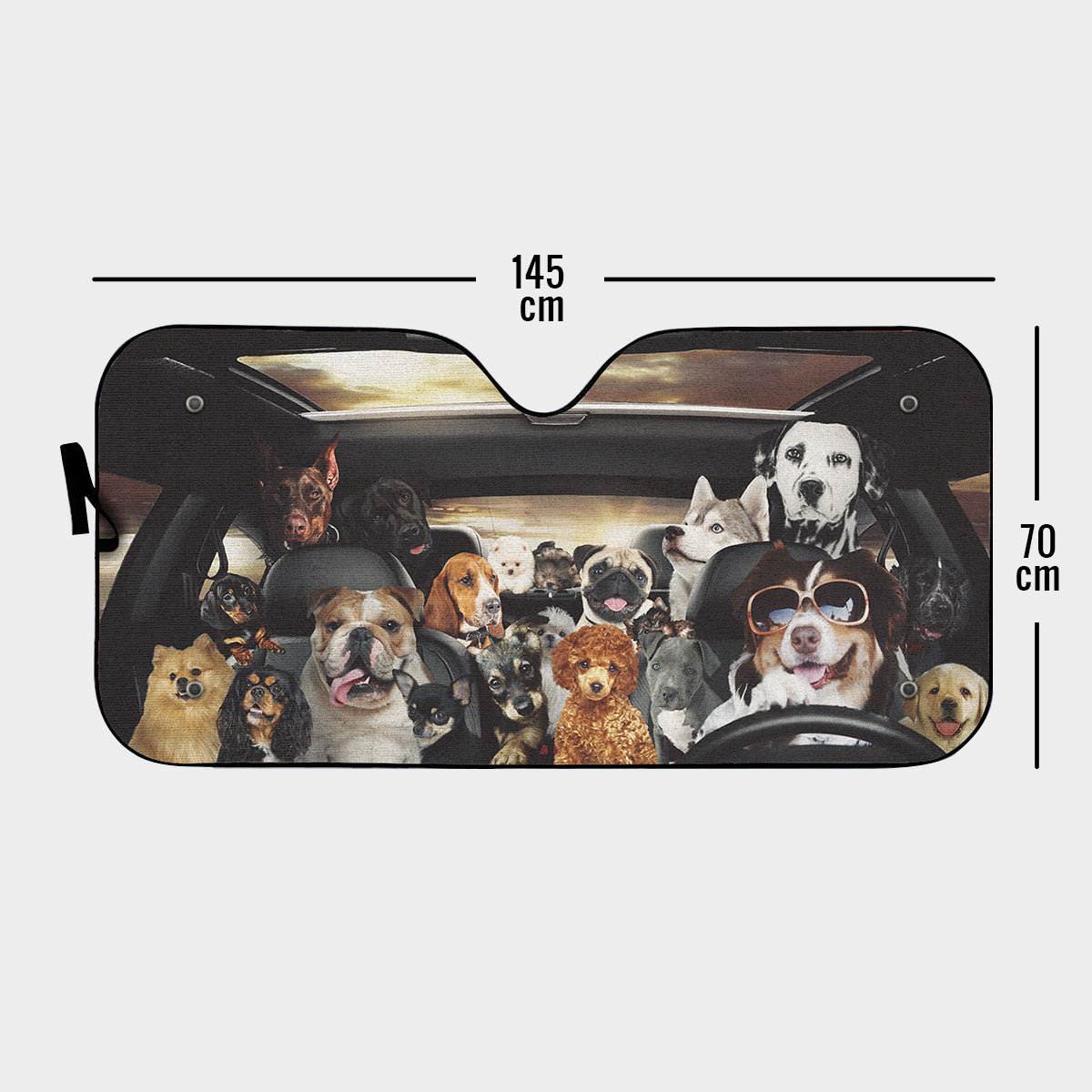 Dog-filled Auto Sun Shade