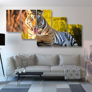 Tiger Lick 5 Piece Canvas Small / No Frame Wall