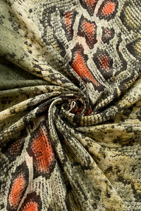 Colourful Ombre Snake Print Frayed Scarf