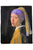 Vermeer Baroque Girl With A Pearl Earring Painting Print Art Scarf 3728