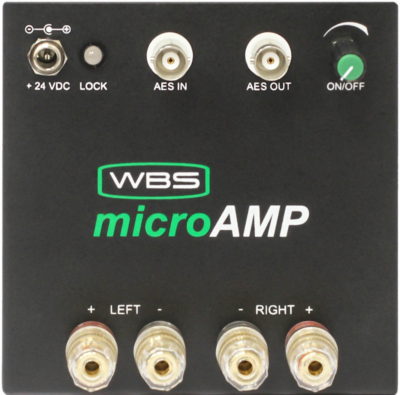 microAmp/75 30 Watt Class D Amplifier Digital In