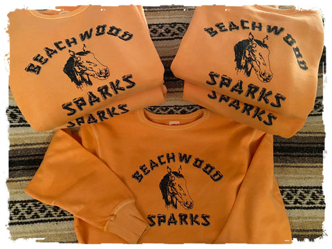 Beachwood Sparks Repro Horsey Crewneck Sweatshirt - Curation Records (4905326248018)