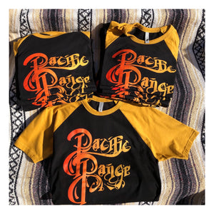 Pacific Range Sunset Shirt - Curation Records