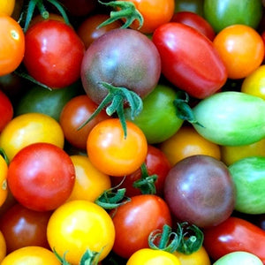 Baby Heirloom Tomato Medley