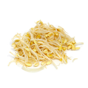 Soybean Sprout 黃豆芽 452G/PK