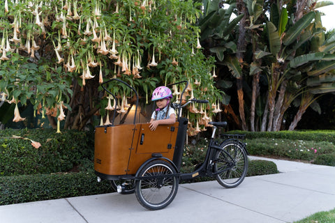 15 Tips Every Parent Should Know to Keep Their Kids Active During Quarantine | Ferla Family - Cargo Bikes