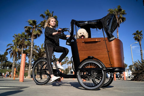 Bike with electric pedal assist