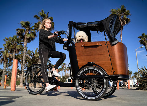 Accessories For Ferla's Family Cargo Bikes With Dog Carriers