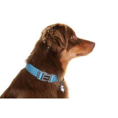 Dog Collar (Size- M)