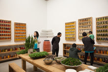 Load image into Gallery viewer, Canned Food Sculpture