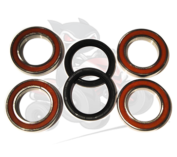 Aftermarket Rear Axle Bearing & Seal Kit For Dinli 450