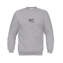 Load image into Gallery viewer, RIC MILANO EMBROIDERED Sweatshirt Grey