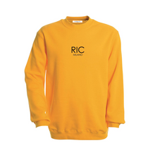 Load image into Gallery viewer, RIC MILANO EMBROIDERED Sweatshirt Yellow