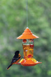 Glass Oriole Feeder with Dots