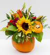 Pie Pumpkin Floral Arrangement - Sunflower