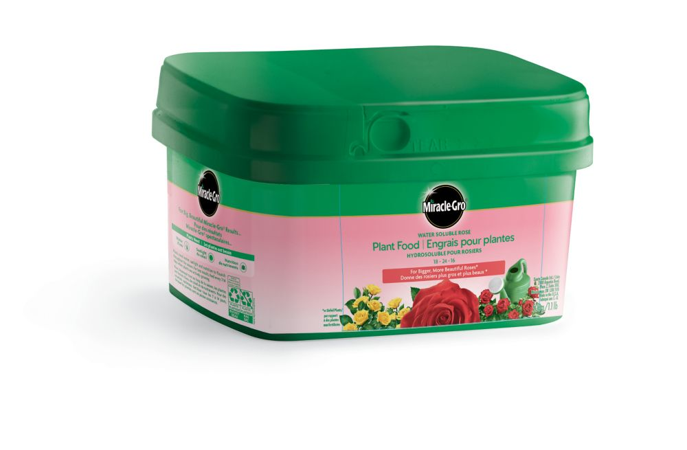 Miracle-Gro® For Roses 500g