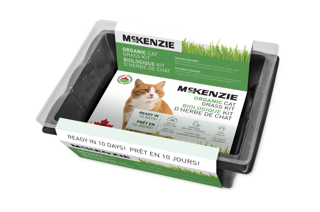 Organic Cat Grass Kit
