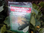 Cucumber Beetle Trap With 2 Lures