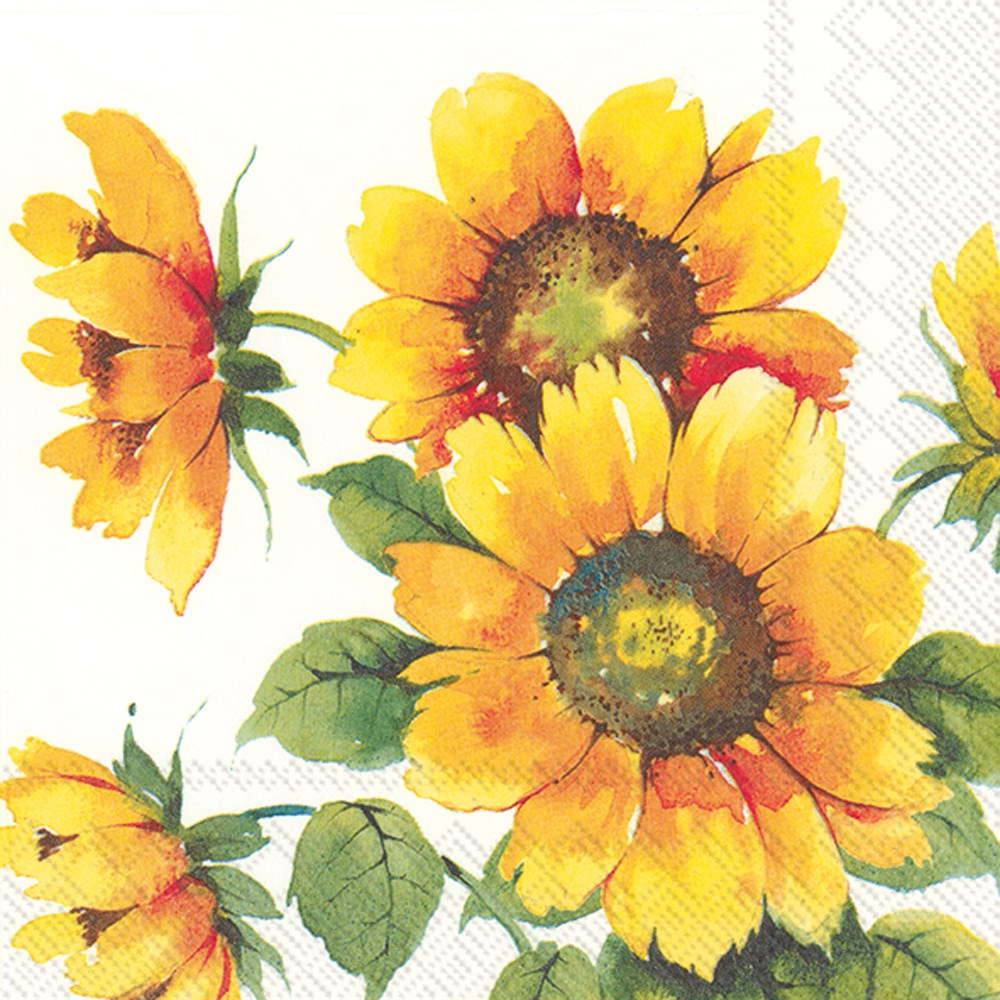 Colourful Sunflowers - Lunch Napkin