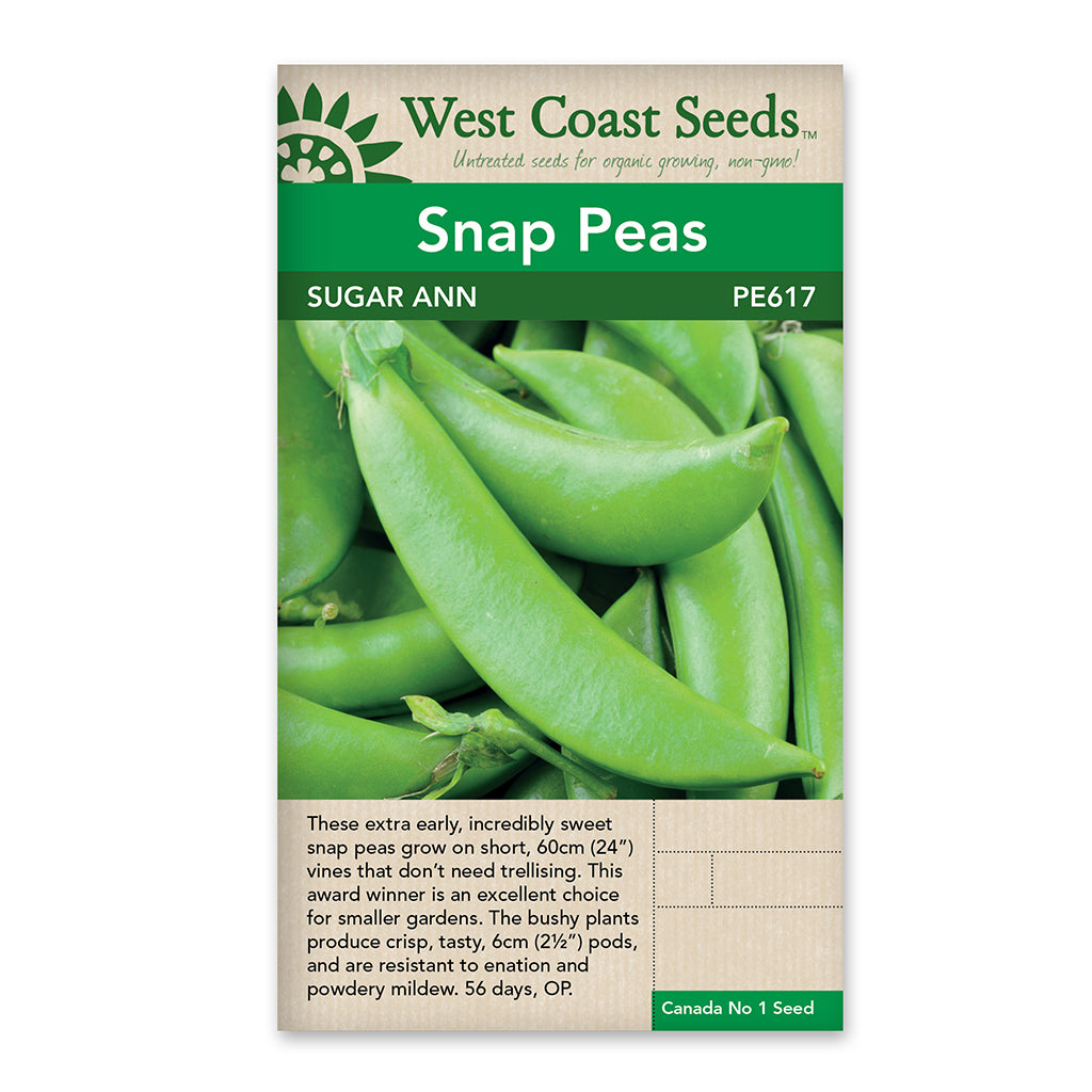 Peas Sugar Ann Seeds